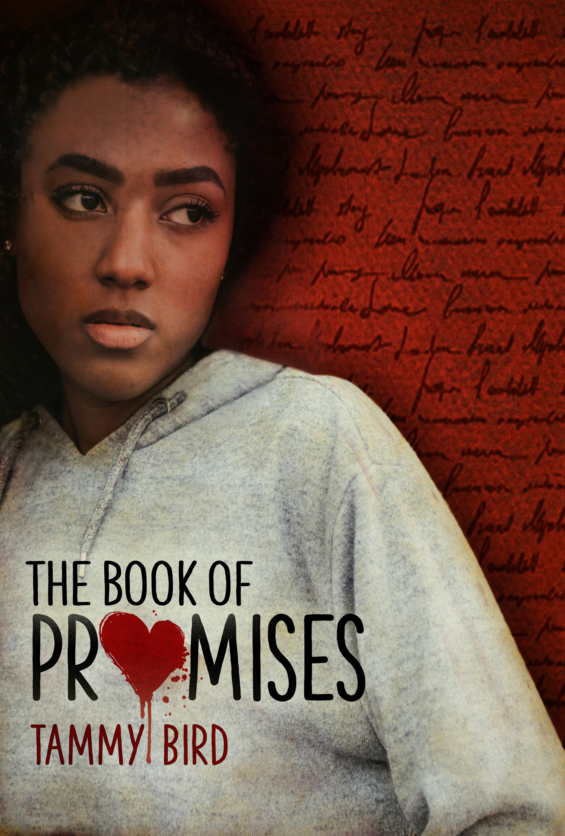 TheBookOfPromises_FlashpointCOVER.jpg